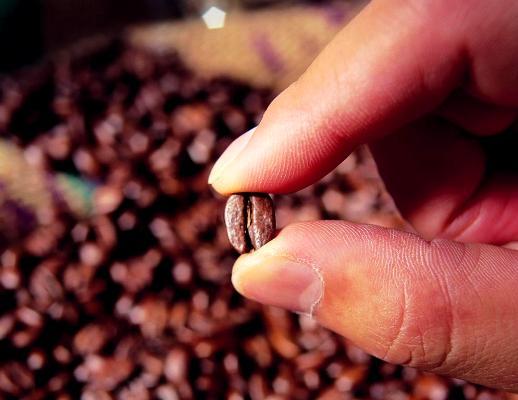 Как выбрать и купить кофе ДОМОЙ?