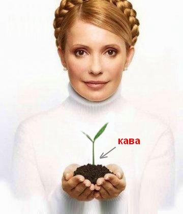 Тимошенко и кофе